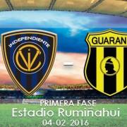 IDV vs guarani