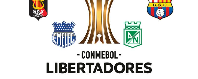 Libertadores Grupos 1